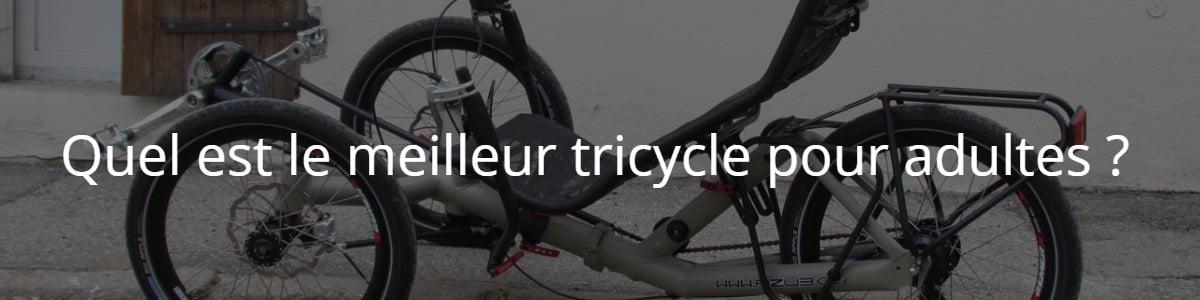 Quel est le meilleur tricycle pour adultes ?