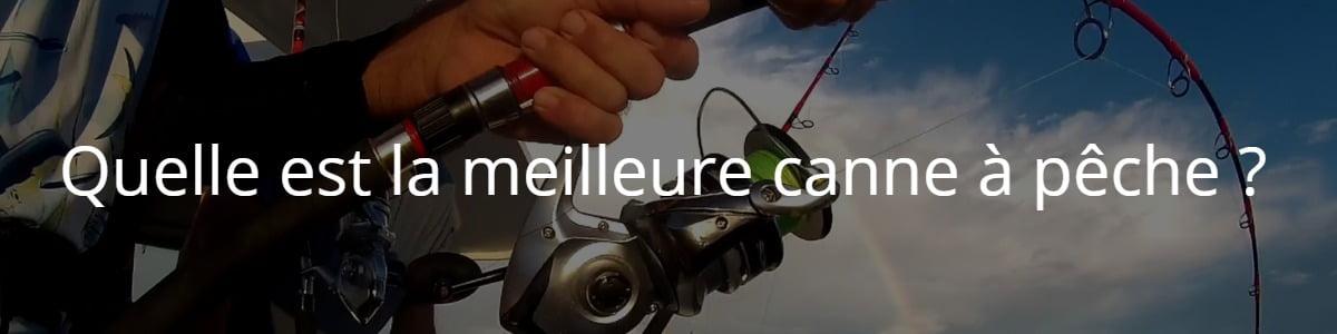 Quelle est la meilleure canne à pêche ?