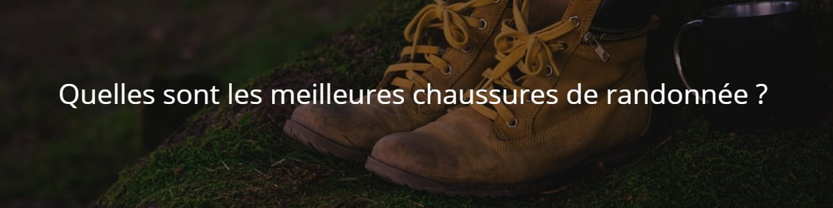 Quelles sont les meilleures chaussures de randonnée?