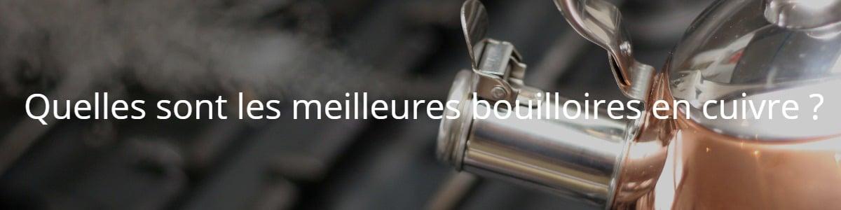 Quelles sont les meilleures bouilloires en cuivre ?