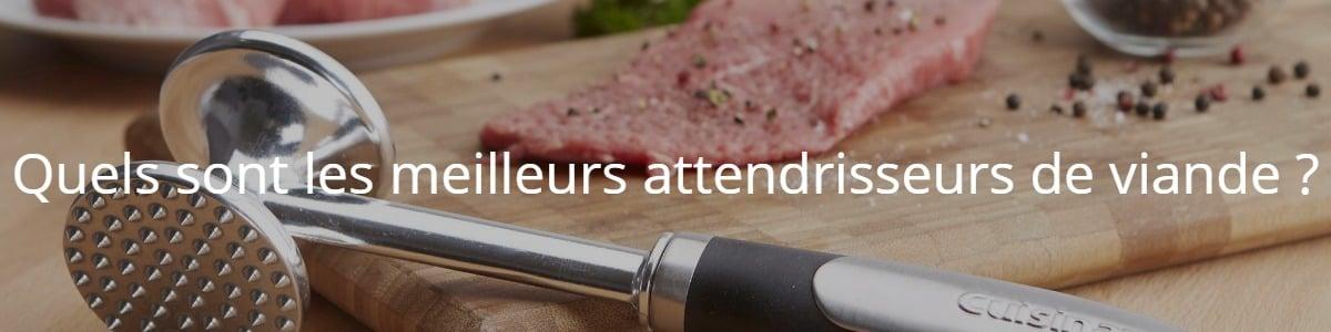 Quels sont les meilleurs attendrisseurs de viande ?