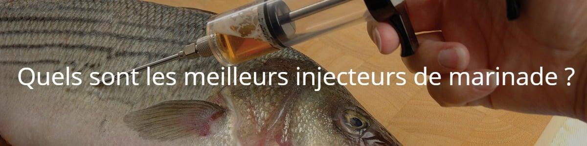 Quels sont les meilleurs injecteurs de marinade ?