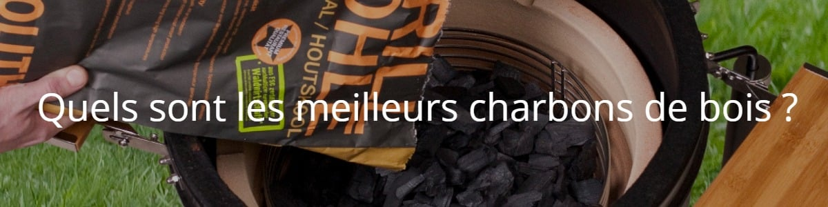 Quels sont les meilleurs charbons de bois ?