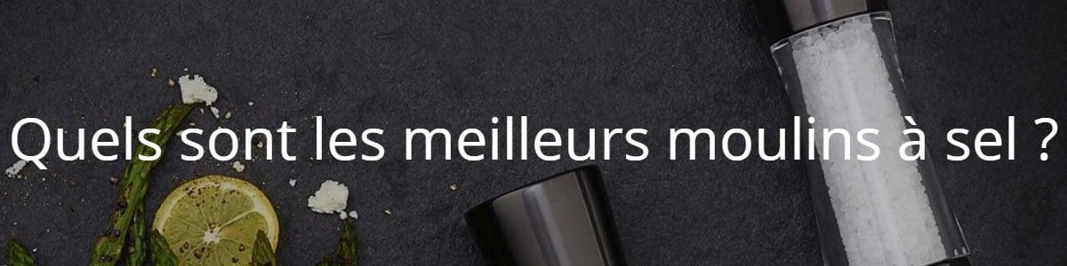 Quels sont les meilleurs moulins à sel ?