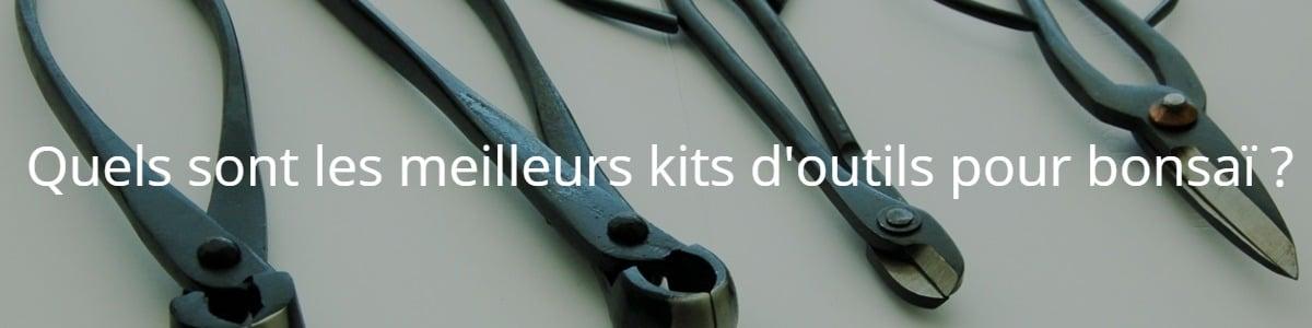 Quels sont les meilleurs kits d'outils pour bonsaï ?